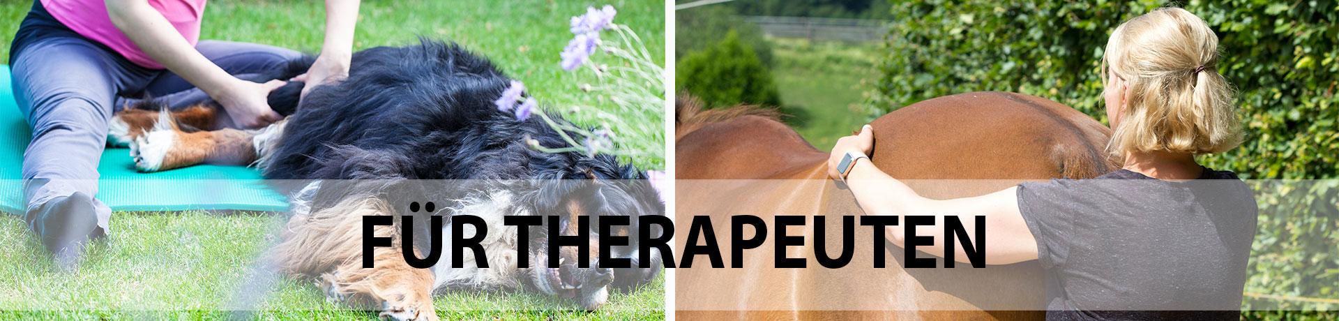 Banner - Für Therapeuten