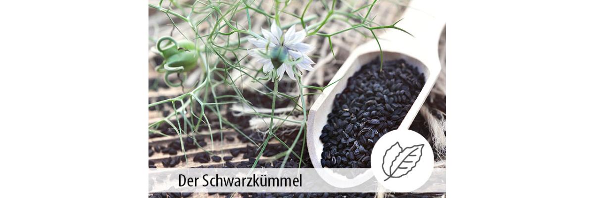 Der Schwarzkümmel - Schwarzkümmel in der Tierernährung - MIGOCKI