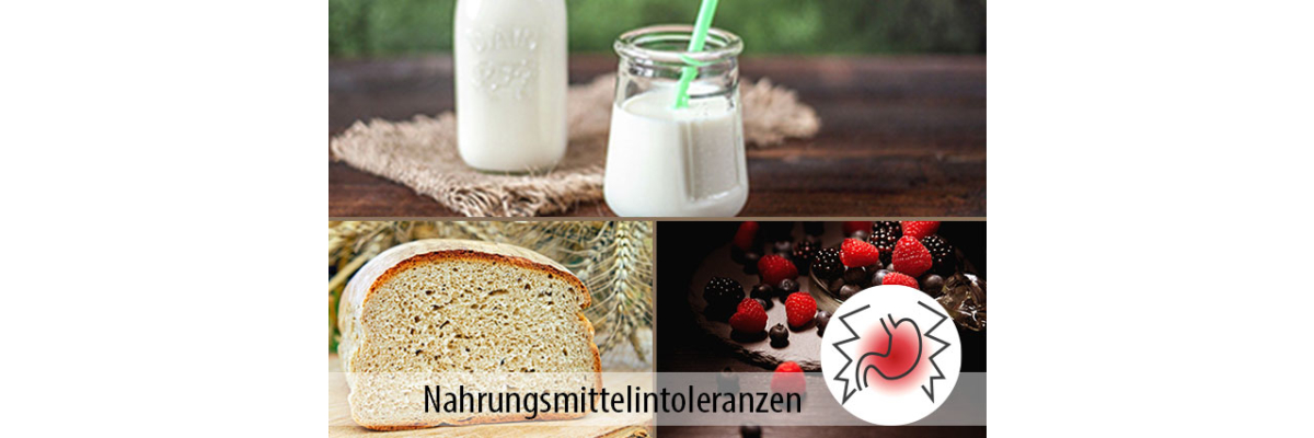 Nahrungsmittelintoleranzen: Fruchtzucker - Laktoseintoleranz - Glutenunverträglichkeit - Nahrungsmittelunverträglichkeit und Ihre Folgen - MIGOCKI