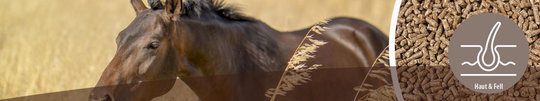 MIGOCKI Pferdefutter für Haut und Fell
