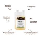 GELENK Liquid für Pferde - MSM und Glucosamin 1000 ml