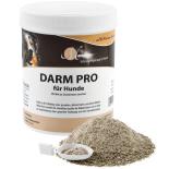 DARM PRO für Hunde - Magenschleimhaut & Darmflora