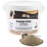 DARM PRO für Pferde - Lebendhefe 1,5 kg