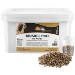 MUSKEL PRO für Pferde - Gesunder Muskelaufbau 10 kg