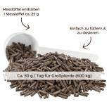 BRONCHIAL für Pferde - Atemwegskräuter 1,5 kg Eimer