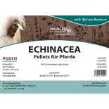 ECHINACEA für Pferde - Kräuter Immunsystem