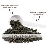 BRENNNESSEL für Pferde - Kräuter Stoffwechsel 1,5 kg Eimer