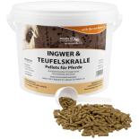 INGWER & TEUFELSKRALLE für Pferde - Kräuter...