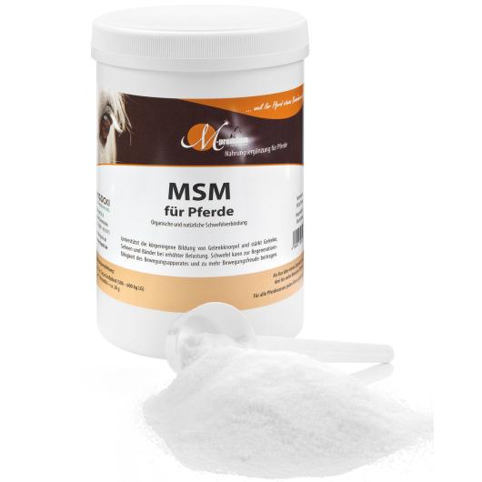 MSM für Pferde - Mobilität und Bewegungsfreude